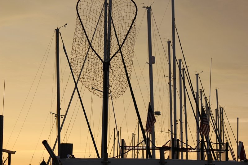 net and masts in a marina