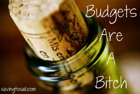 Budgets are a Bitch